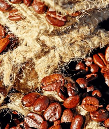 Préférer le café bio, une démarche aux multiples bienfaits